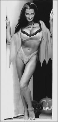 Lily Munster Halloween Black And White 8x10 Picture Celebrity Print