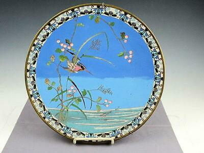"""Antique 19th Century Chinese Export Cloisonne 12"""" Plate With Kingfisher"""