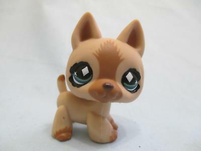 Littlest Pet Shop Rare German Shepherd Dog 768 Authentic Lps Exclusive