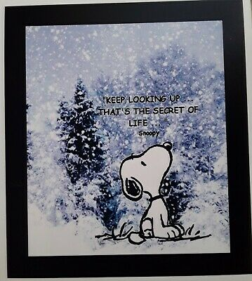 Peanuts ♡ Snoopy ♡ NEVER ♡ Magnet ♡