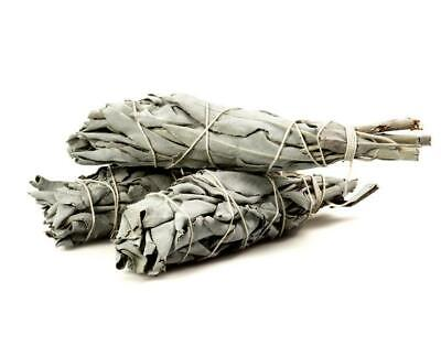 "(2 pack) White Sage Smudge stick. Made in USA. 3""-4"""