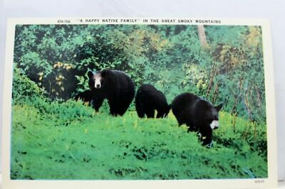 Great Smoky Mountains National Park Happy Native Family Postcard Old Vintage PC