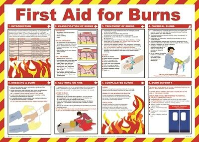 First Aid For Burns Poster - 59cm x 42cm A603T SAFETY FIRST AID