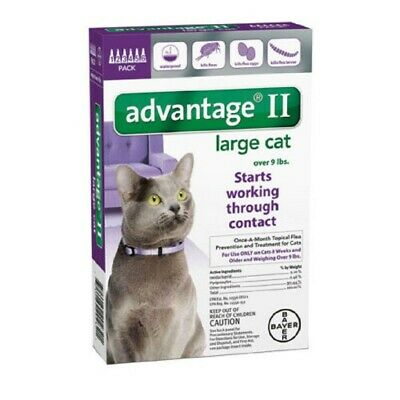 Bayer Advantage II for Cats Over 9 lbs - 6 Pack - NEW - FREE SHIPPING