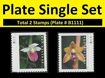 US Wild Orchids forever plate single set (2 stamps) B1111 MNH 2020