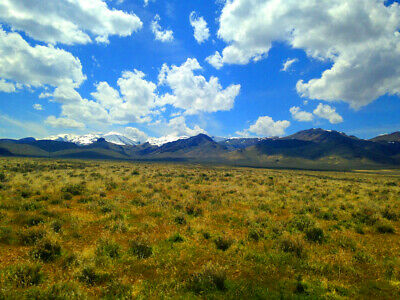 Rare 80 Acre Elko Nevada Ranch Near Utah/Idaho Border!  Cash Sale!  No Reserve!