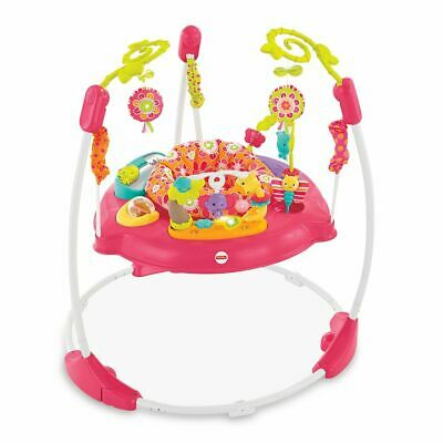 NEW Fisher-Price Pink Petals Jumperoo
