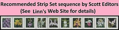 US Wild Orchids forever coil strip set (10 stamps) MNH 2020