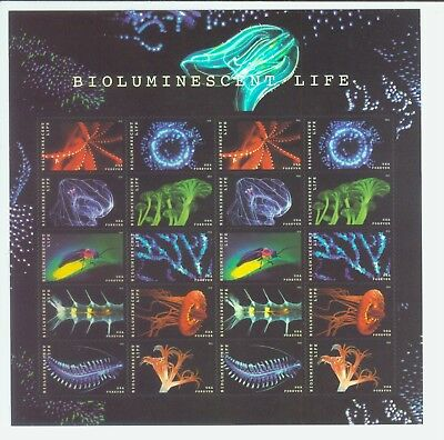 SHEET 20 Forever STAMPS USPS BIOLUMINESCENT LIFE Mint Condition ! 5264-5273 MNH
