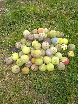 Tennis balls for dogs Used Approx 68