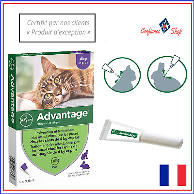 Advantage Antiparasitaire Chat Lapin Plus de 4KG Anti Puce 6 Pipettes Soin Sante