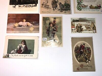Set of Vintage Samoyed Dog  Postcards From 1906-1921