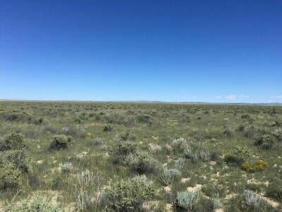 10 Acres Unrestricted in the Heart of New Mexico - No Reserve