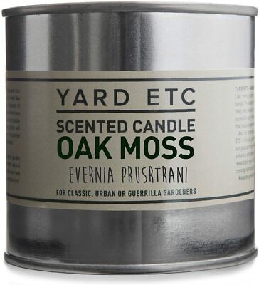 Yard etc Scented Ted Candle, Oak Moss, 250ml