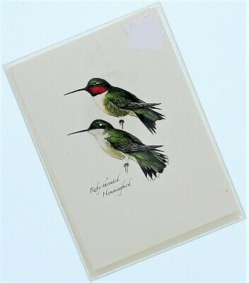 Peterson Hummingbird Assortment 8 Note Cards And Envelopes