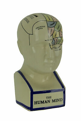 Scratch & Dent Phrenology Head With Colored Map Ceramic Coin Bank