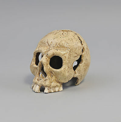 9973137 Candle Holders Candles Holder Skull Iron White 8x12x8cm