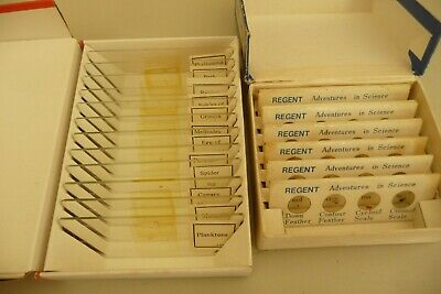Prepared slides or ANIMALS  x 18 in 2 boxes @ 1970's - use in microscope   U4