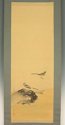 "掛軸1967 JAPANESE HANGING SCROLL ""Anseriformes""  @f360"