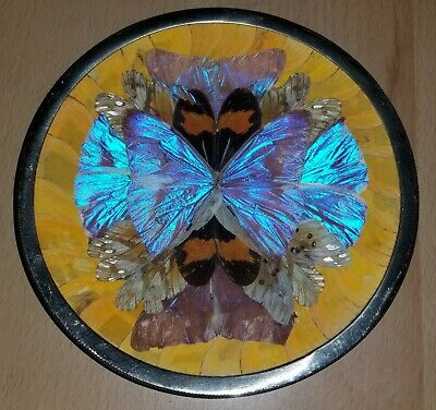 """⭐️Vintage Iridescent Butterfly Wing Dish Plaque Plate  Brazil Wall Art 6"""""""
