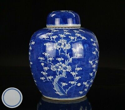 V-LARGE Chinese Antique Blue and White Porcelain Prunus Blossom Vase & Lid QING