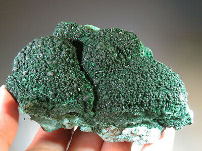 "3.5"" Natural Malachite with Chrysocolla CRYSTAL Mineral Specimen  - Congo *9126"