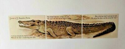 Set Of 3 Vintage Style Alligator Puzzle Postcards From St. Augustine, Florida