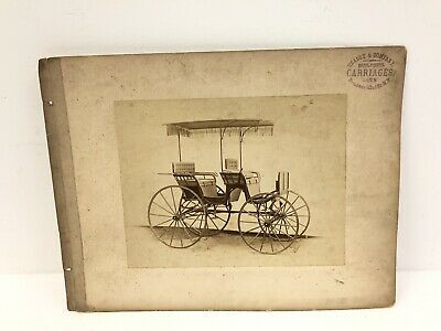 Vintage HEALEY & COMPANY CARRIAGE CABINET PHOTO Buggy Advertising Studio Picture