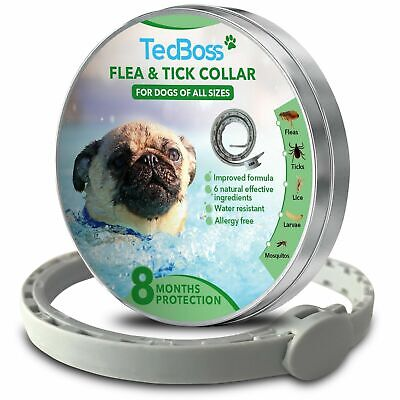 Flea and Tick Control Collar for Dogs All Sizes 8 months protection All Natural