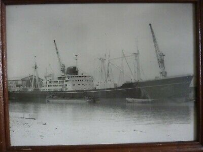 #php.03735 Photo SS PAMPA CHARGEURS REUNIS PAQUEBOT MIXTE CARGO SHIP LE HAVRE