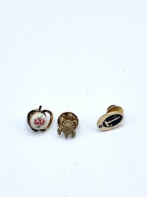 3 Vtg Lapel Pins Turtle, Apple With Rose, Terry Berry  1/10-10KG Candle Holdler