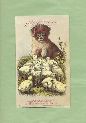 PUPPY DOG, Cute CHICKS On Adorable BORAXINE SOAP Victorian Trade Card