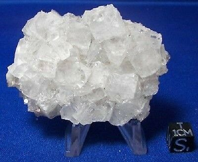 Collection Mineral APOPHYLLITE Cluster Crystal