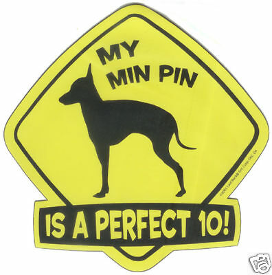 """MIN PIN Dog Wag Tag CAR MAGNET """"Is A Perfect 10"""" - NEW"""