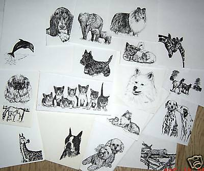 100 Assorted Animal Prints for Paper Art Projects Kids Love-Cute Pictures