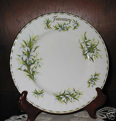 Royal Albert  FLOWER OF THE MONTH Plate January