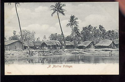 Ceylon NATIVE Village early PPC