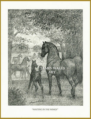 "Morgan Saddlebred Horse Art ""waiting In The Wings"" James Walls"