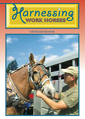 DVD Harnessing Work Horses By: Brandt Ainsworth