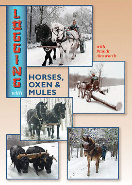 DVD Logging With Horses, Oxen & Mules -Brandt Ainsworth