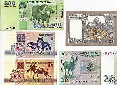 5 Notes Bundle Unc. Paper Money +++++Animal Lover +++++