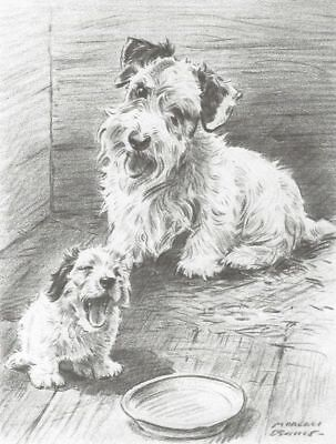 "* Sealyham Terrier w/Pup - Dog Art Print - Dennis ""N"""