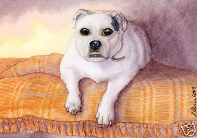 Victorian Bulldog smiling dog art signed print S Alison