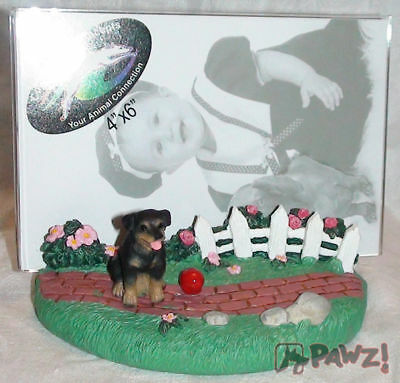 ROTTWEILER by Fence Dog Resin Picture Photo Frame New