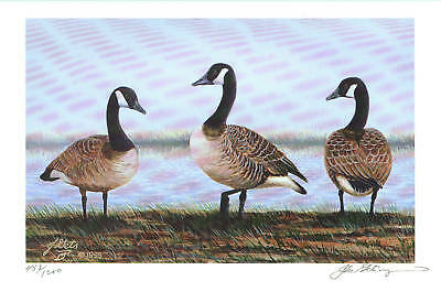 A HEAD ABOVE - Canada Geese waterfowl signed art print
