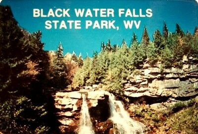 Blackwater Falls State Park WV Medium Postcard Magnet