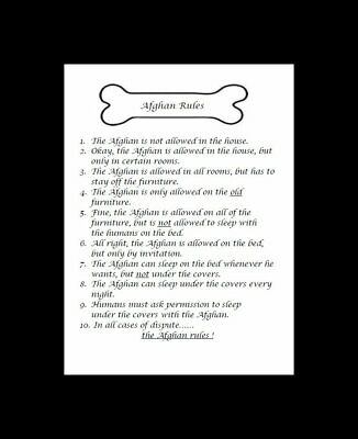 "Afghan Hound ""Rules"" Dog Art Print - Matted"