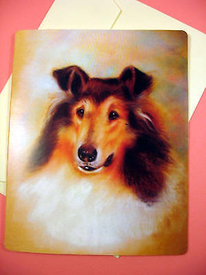 Collie Greeting Card - Blank Note Card - sku 011