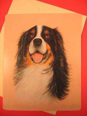 Bernese Mountain Dog Greeting Card - Blank Note Card - sku 039