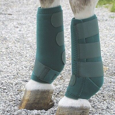 Professional Sports Horse Protective Boots Pair- English Or Western Saddle Horse